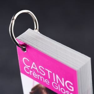 L'Oreal - Casting swatch book